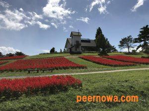 ガーデン peernowa.com